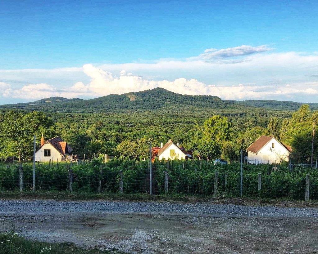 Kilátás a Kovácsi-hegyről